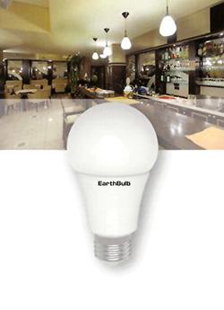EarthBulb A19